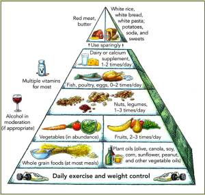Harvard Food Pyramid